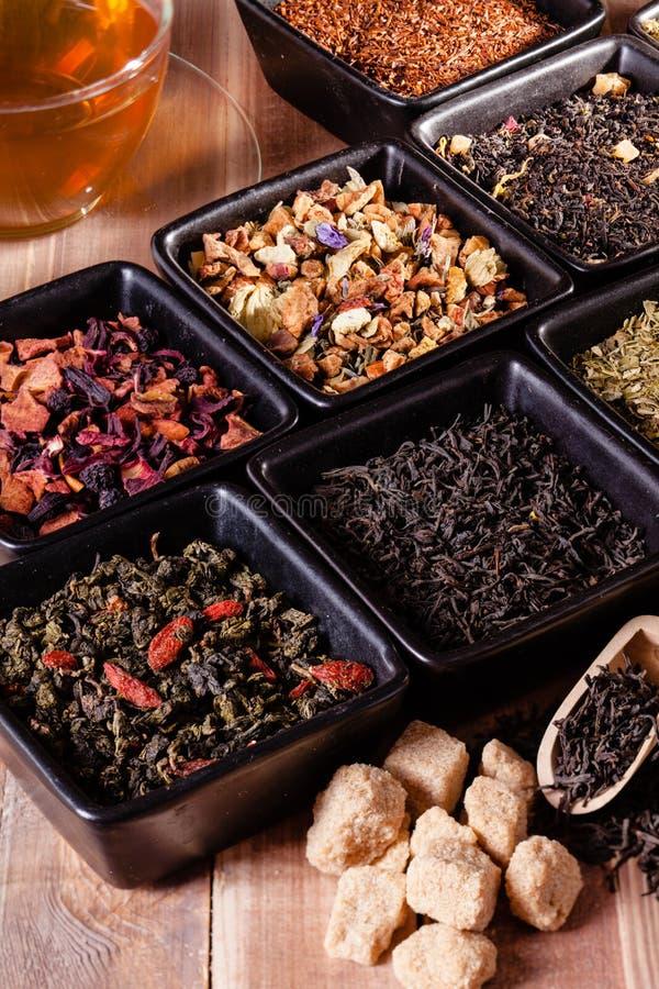 Różnorodni typ herbata zdjęcie royalty free