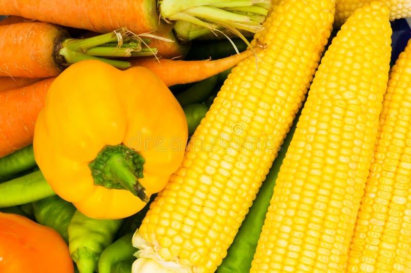 Różnorodni warzywa układają zdjęcia stock