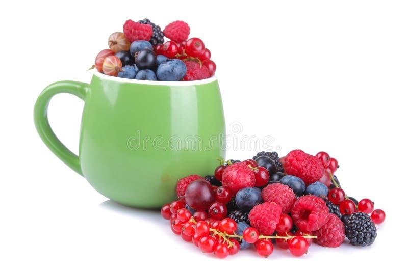 Różnorodny jagody zakończenie wliczając czarnych jagod, malinek, czernic i rodzynków w zielonej filiżance na białym tle, obraz stock