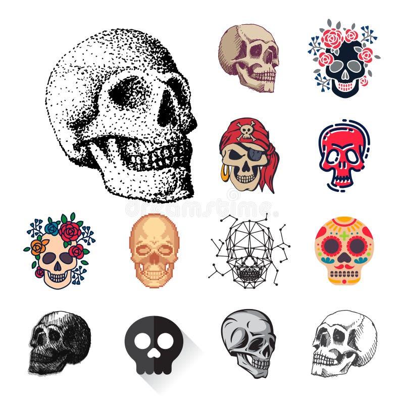 Różnych stylowych czaszek twarzy Halloween horroru stylu tatuażu anatomii wektorowa ilustracyjna sztuka royalty ilustracja