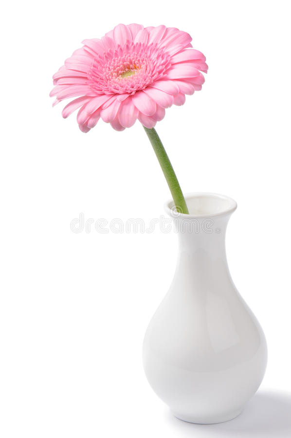 różowa chryzantemy waza fotografia stock