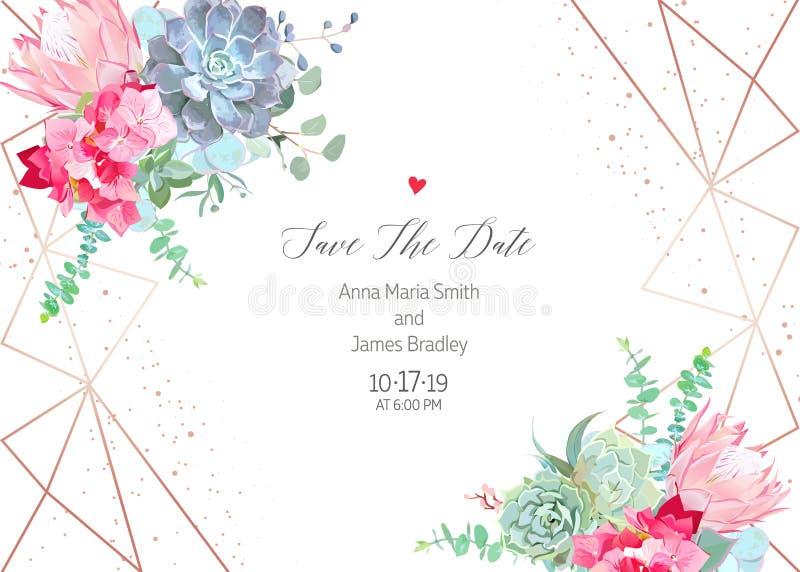 Różowa hortensja, protea, błękitny echeveria sukulent, eukaliptus, gr royalty ilustracja