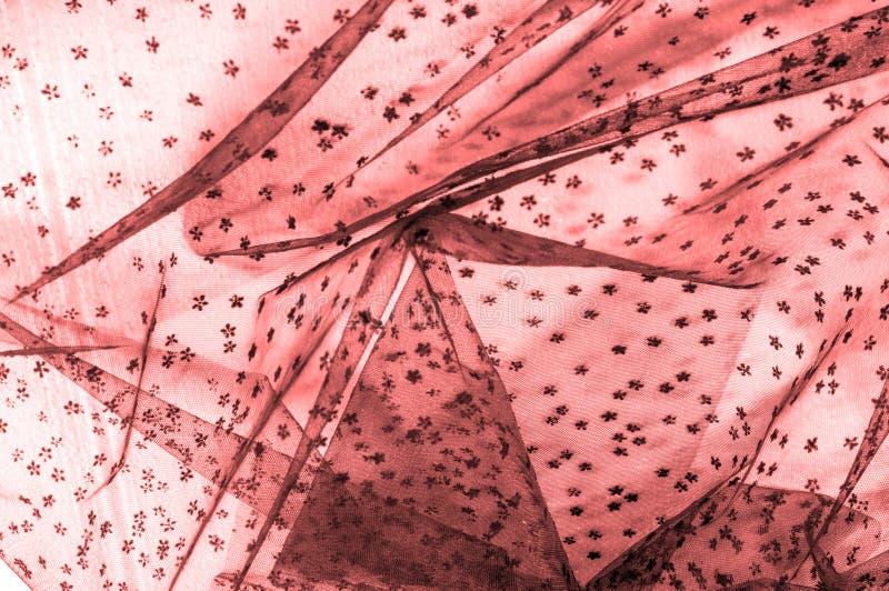 Różowa koronka na białym tle Ekstrawagancja i elegancja jesteśmy com zdjęcia stock