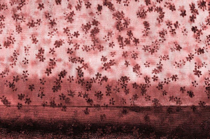 Różowa koronka na białym tle Ekstrawagancja i elegancja jesteśmy com fotografia stock
