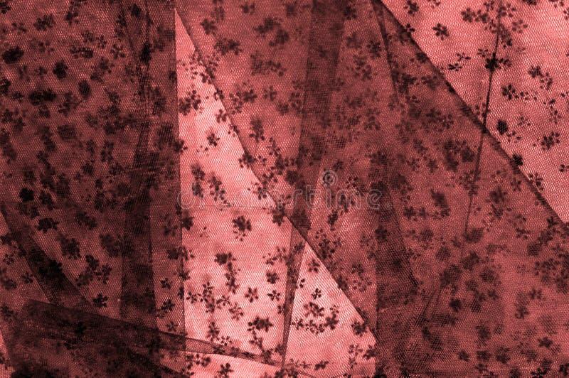 Różowa koronka na białym tle Ekstrawagancja i elegancja jesteśmy com obrazy royalty free