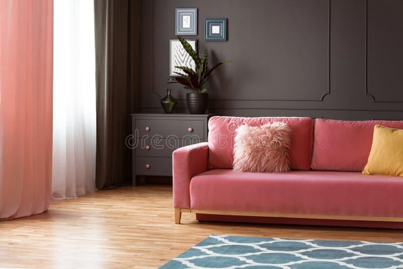 Różowa leżanka z poduszkami w przestronnych popielatych żywych izbowych wnętrzy wi fotografia stock