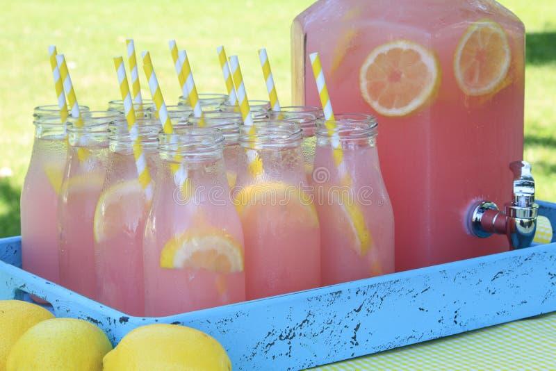 Różowa lemoniada przy pinkinem w parku fotografia royalty free