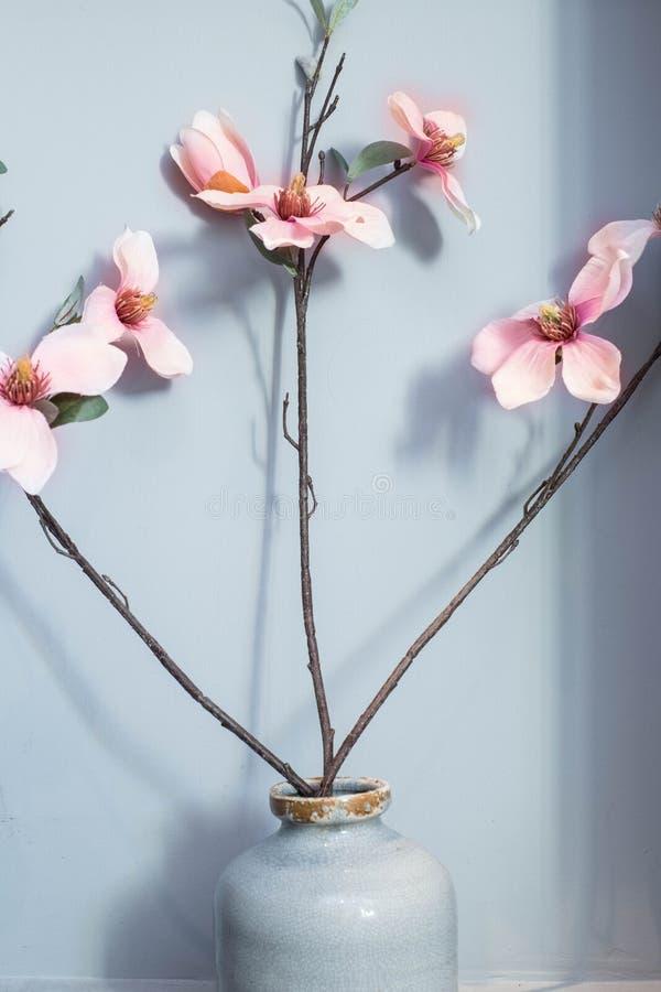 Różowa orchidea kwitnie w ceramicznej wazie z błękitnym tłem fotografia royalty free