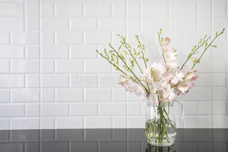 Różowa orchidea w szklanym dzbanku fotografia royalty free