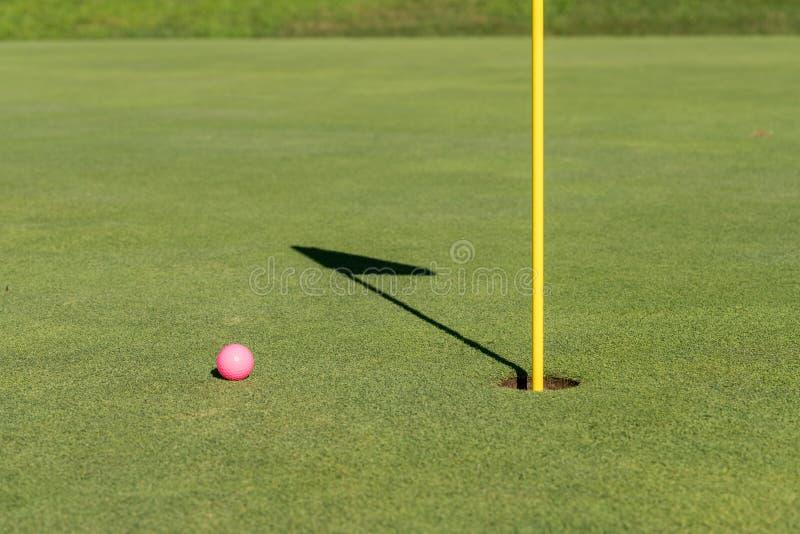 Różowa piłka golfowa flaga i dziurą na kładzenie zieleni obraz stock