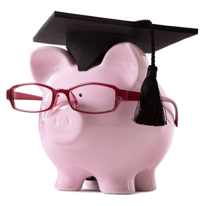 Różowa prosiątko banka szkieł szkoły wyższa absolwenta kapeluszowa nakrętka zdjęcia royalty free