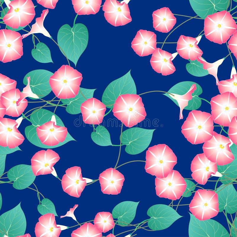 Różowa ranek chwała na Błękitnym Indygowym tle również zwrócić corel ilustracji wektora ilustracja wektor