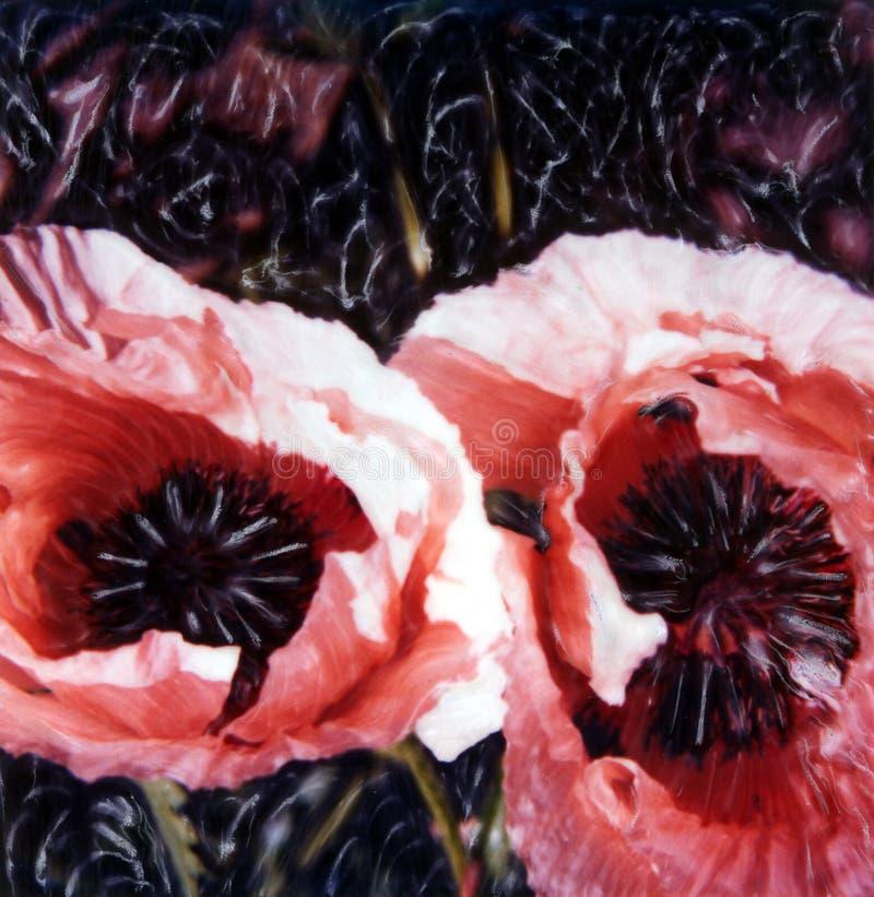 różowe maku ilustracja wektor