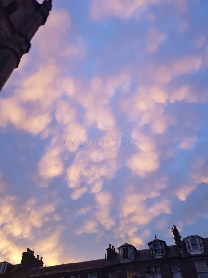 różowe niebo zdjęcia royalty free