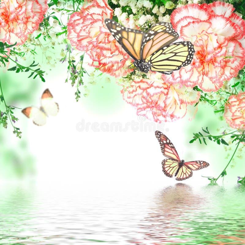 różowe róże i motyl royalty ilustracja