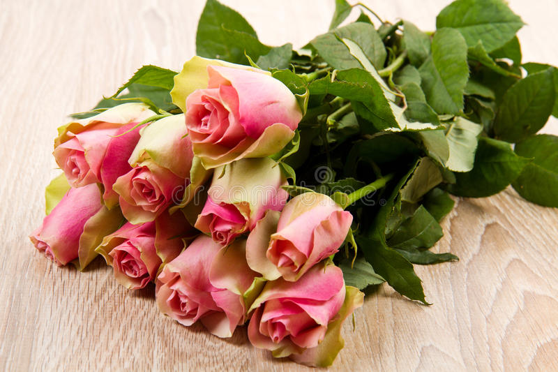 Różowe róże odizolowywać obraz stock