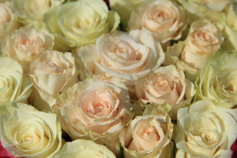 Różowe róże w różnych cieniach w ślubnym przygotowania zdjęcie royalty free