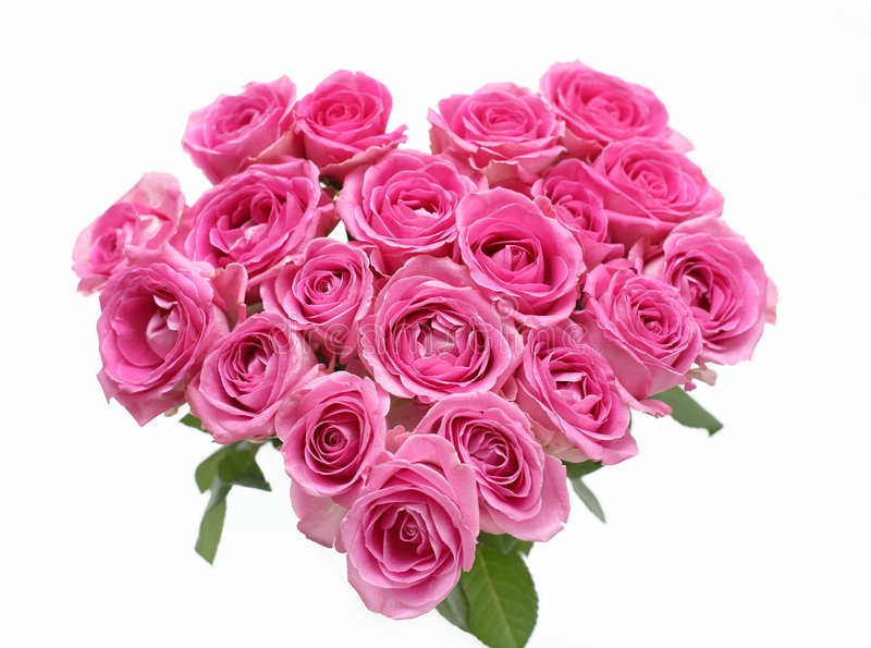 różowe serce róże fotografia royalty free