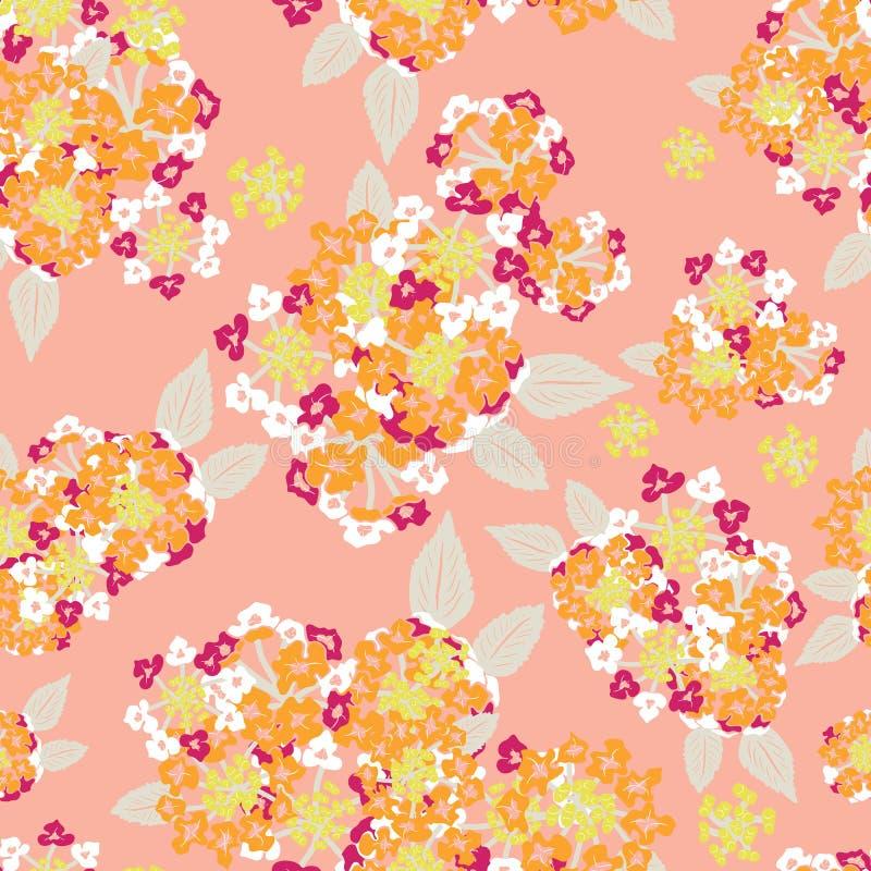 Różowego pomarańczowego kwitnącego lantana kwiatu bukieta lata wektoru kwiecisty bezszwowy wzór dla tkaniny, tapeta, scrapbooking royalty ilustracja