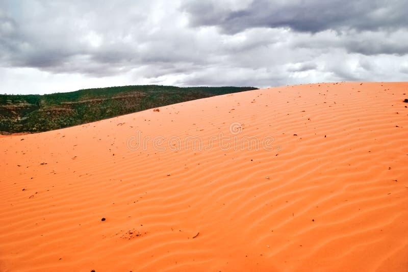 różowi diuna piaski obraz royalty free