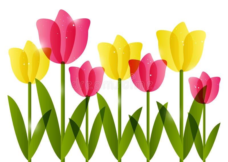 Różowi i żółci tulipany ilustracja wektor