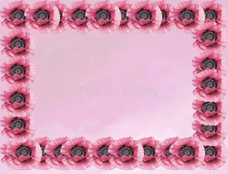 Różowi maczki na różowym obraz olejny kanwy tle zdjęcia stock