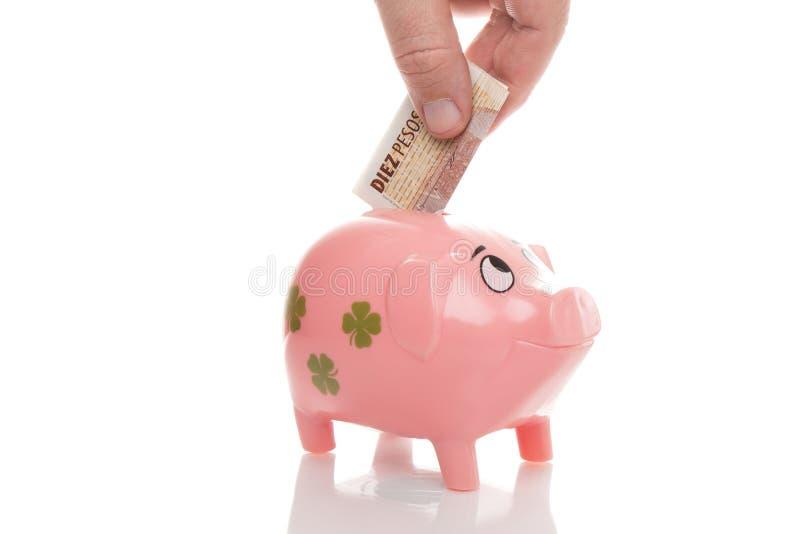 Różowi pieniądze pigg peso Argentyna zdjęcie stock