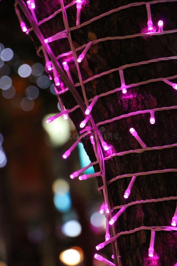 Różowy światło w nocy zdjęcie stock