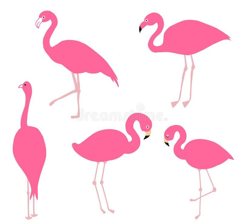 Różowy flaminga set, ilustracja ilustracji