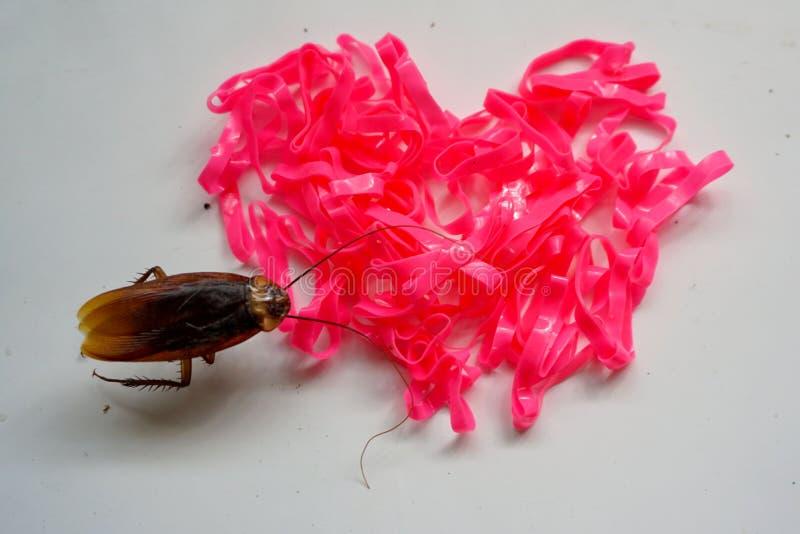 Różowy gumowy kierowy kształt i mały karakan obrazy stock
