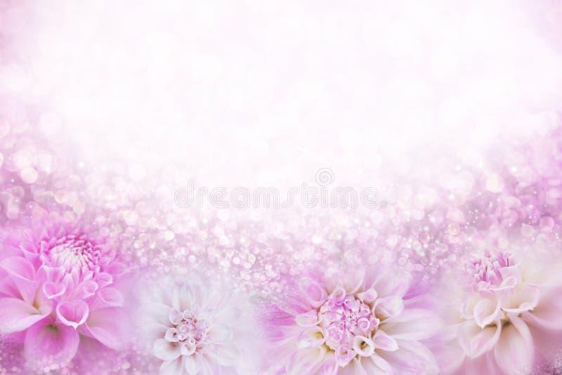 Różowy i biały dalia kwiatu ramy tło w miękkim rocznika brzmieniu z błyskotliwości światłem i bokeh, kopii przestrzeń dla teksta obraz stock