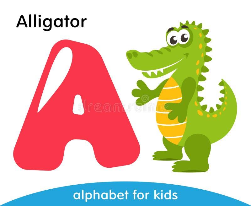 Różowy list A i zielony aligator ilustracji