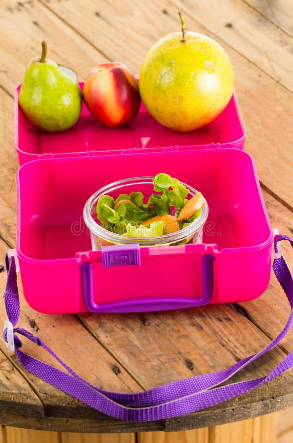 Różowy lunchbox obraz royalty free