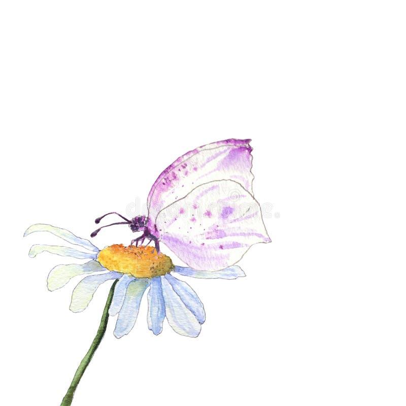Różowy motyla i rumianku kwiat ilustracja wektor