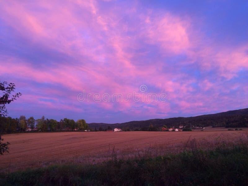 Różowy niebo obrazy stock