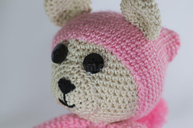 Różowy niedźwiedź fotografia royalty free