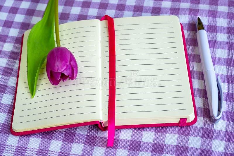 Różowy notepad z ballpoint piórem i jeden purpurowym tulipanem na białym purpurowym w kratkę tekstylnym tle prążkowanym papieru,  zdjęcia royalty free