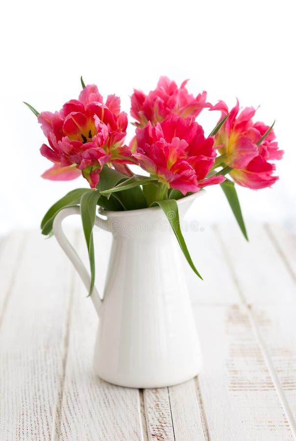 Różowy peonia tulipan zdjęcia stock