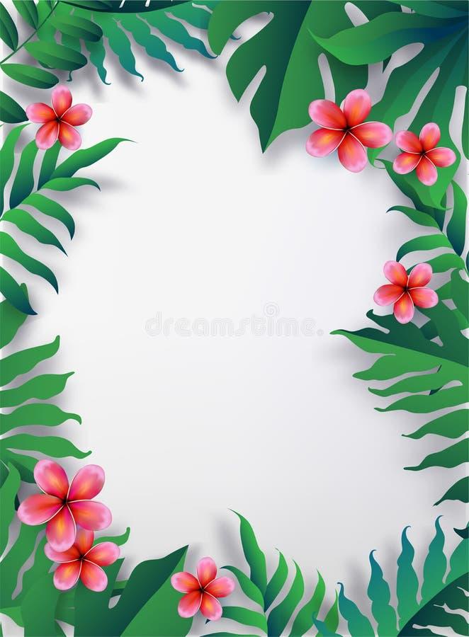 Różowy Plumaria kwiat z kopii przestrzenią, lato wesołych świąt royalty ilustracja