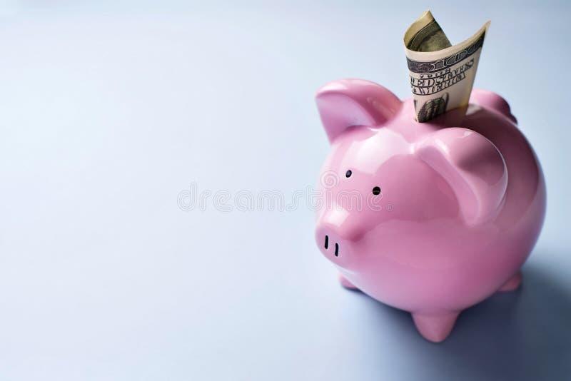 Różowy prosiątko bank z dolarowym rachunkiem w szczelinie zdjęcia stock