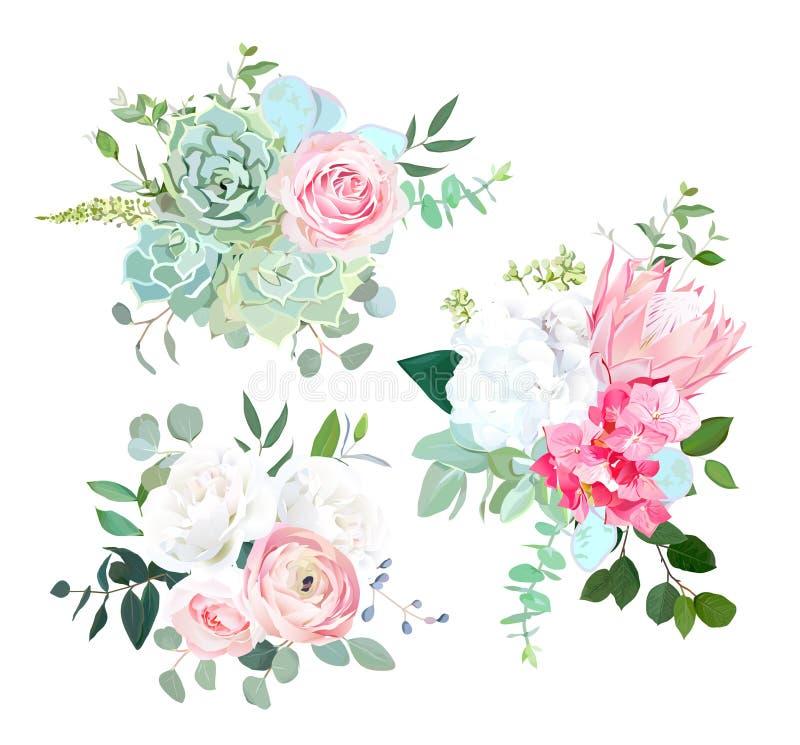 Różowy protea, ranunculus, wzrastał, biała hortensja, oziarniony eucalyptu royalty ilustracja