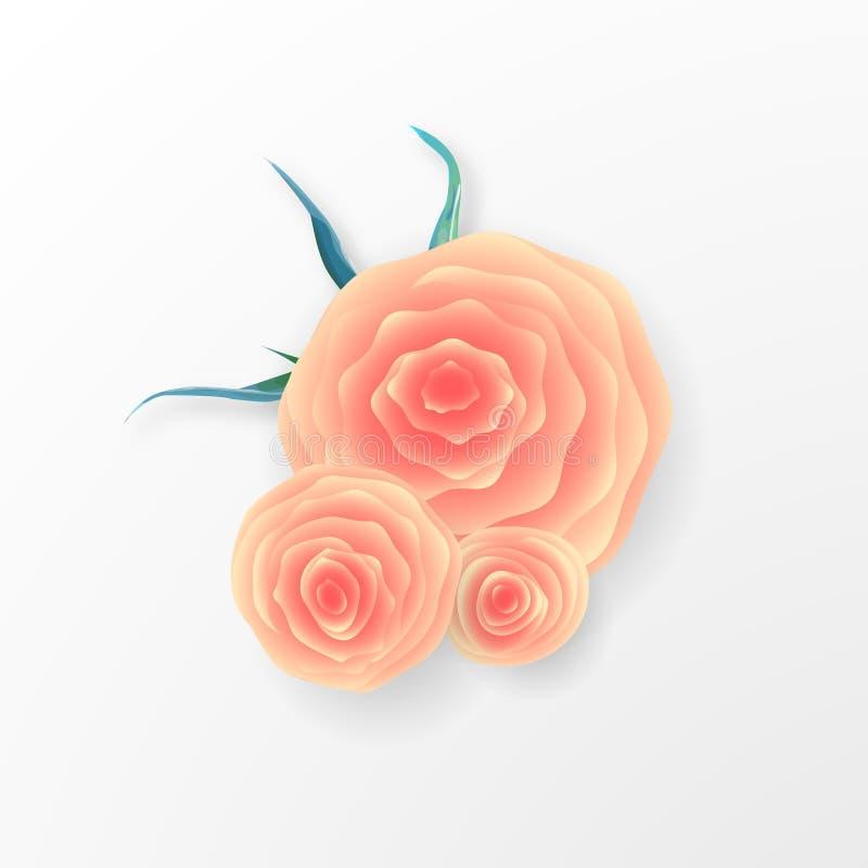Różowy róża skład na białym tle romantyczny tło St walentynki ` s dzień, 8 maszeruje, kobiety ` s dzień ilustracji