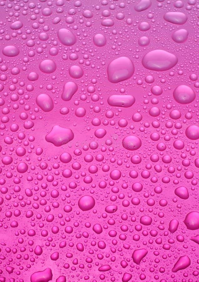 różowy tło obrazy royalty free