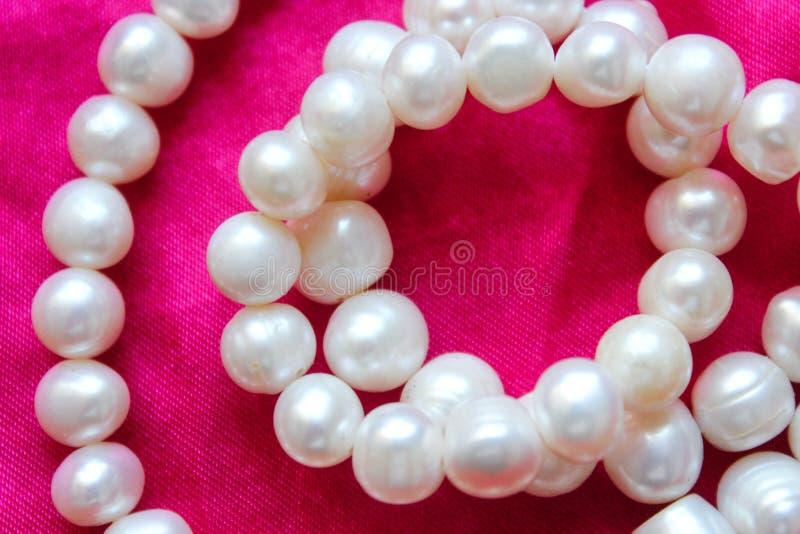 Różowy tło z białymi perłami Piękna tekstura zdjęcie stock