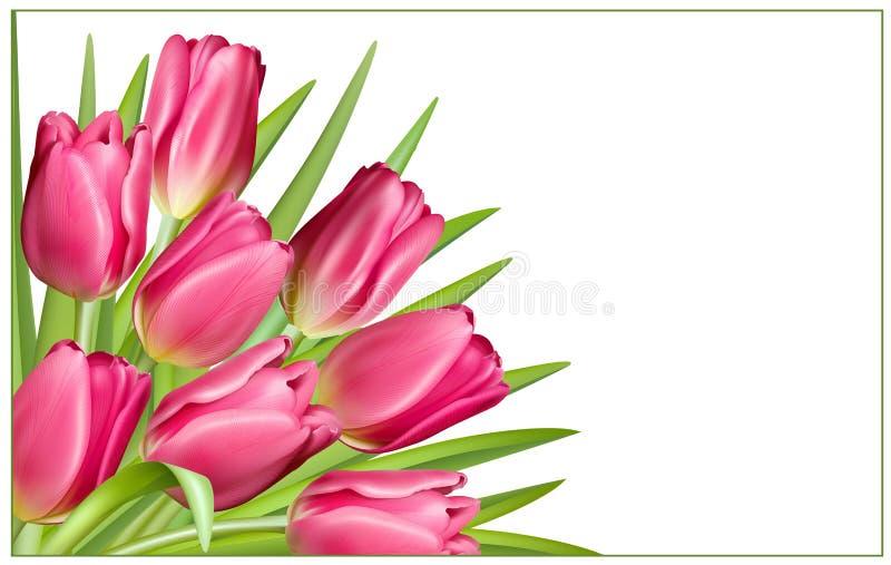 Prezent rama z różowymi tulipanami royalty ilustracja