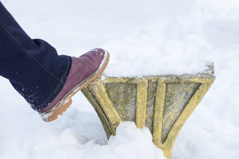 Różowy but w śniegu fotografia stock