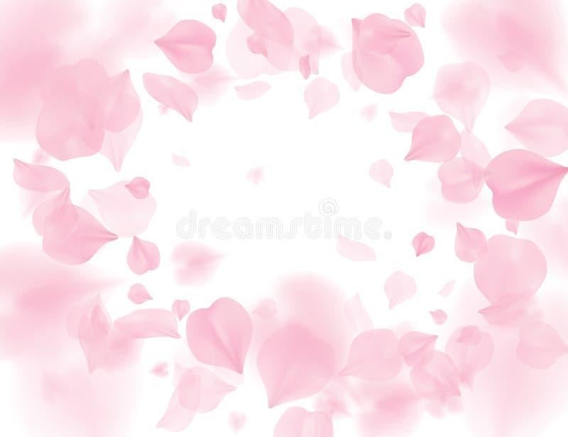 Różowych Sakura płatków kwiatu wektoru spada tło Romantyczny okwitnięcie odizolowywający na białym tle Narzut walentynki 3D royalty ilustracja