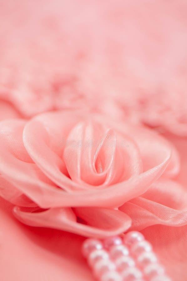 Róży koronki miękka ostrość obraz royalty free