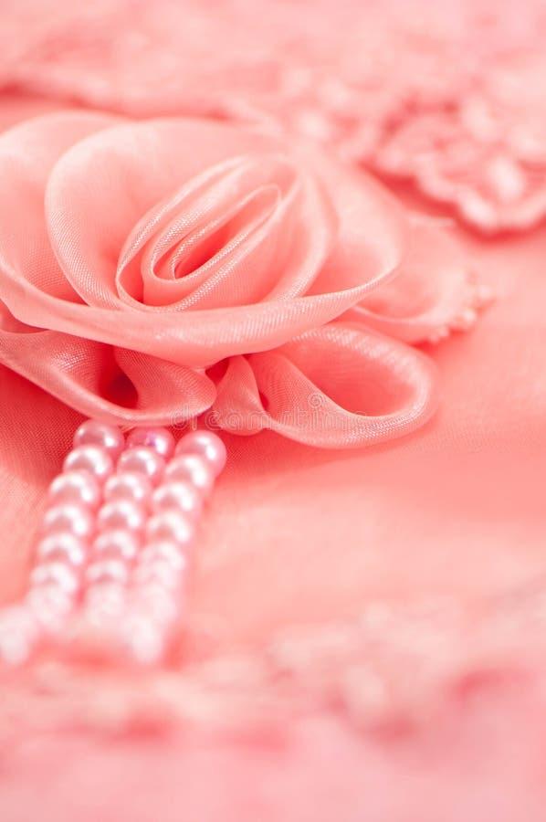 Róży koronki miękka ostrość zdjęcie royalty free