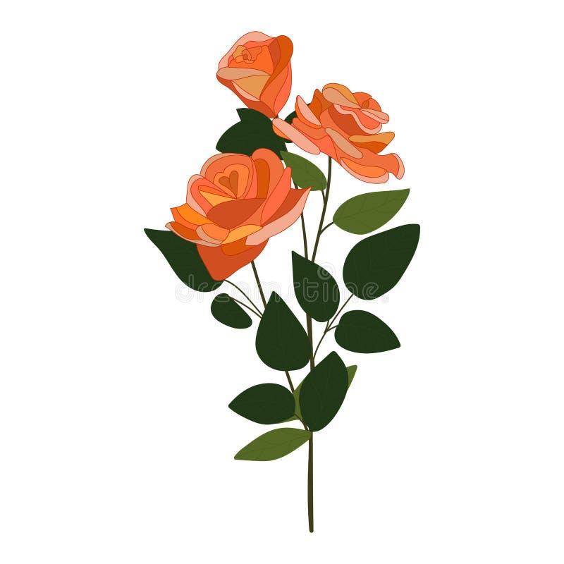 Róży wektorowa ikona na białym tle Trzy kwiat?w ilustracja odizolowywaj?ca na bielu Kwiecisty realistyczny stylowy projekt ilustracji